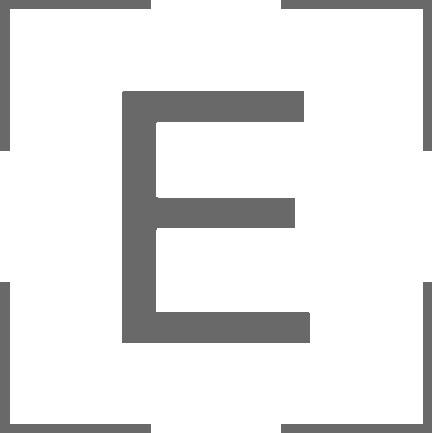 EMBARC LOGO 2 gray