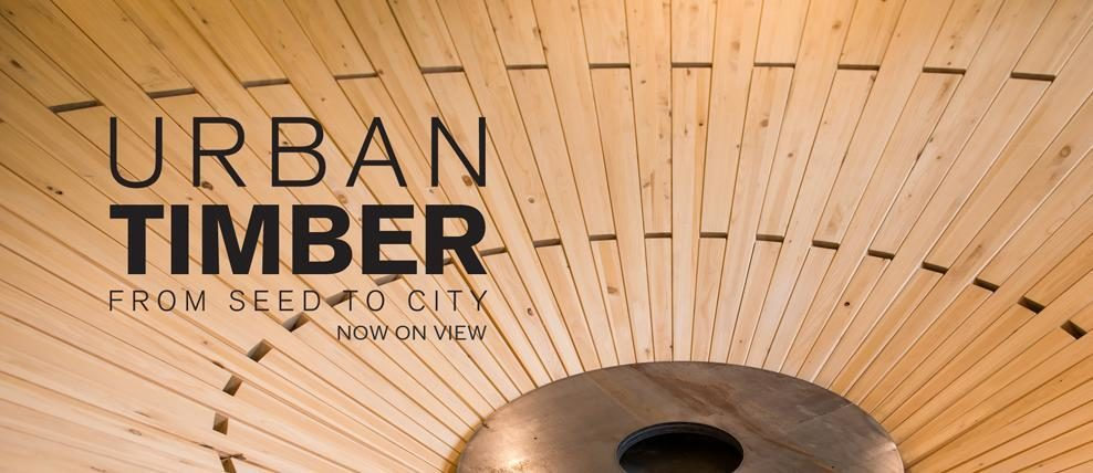 Boston Society of Architects | Urban Timber: From Seed to City