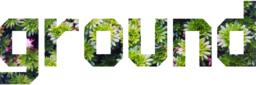 Ground logo sedum2